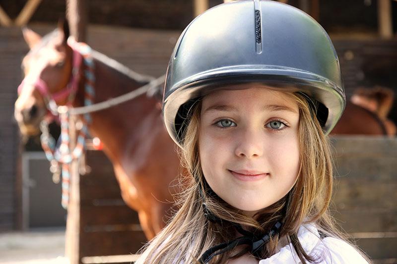 online horse liability insurance