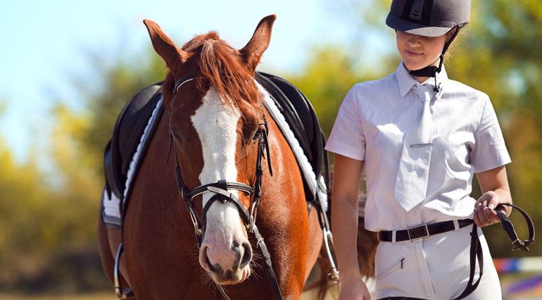 horse-jockey