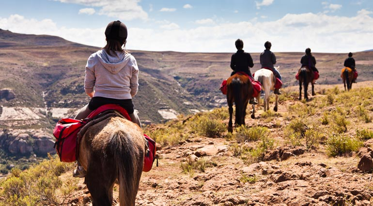 guided trail rides insurance