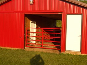 Example of double barrier gates that can also be used as a temporary catch and holding pen for safely removing one horse from a herd. It consists of two gates at the end of a 3-sided shed serving a pasture containing several horses.  The two gates used together provide a 9' x 13' containment area.