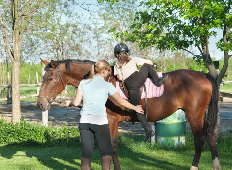 Horse Trainer Riding Instructor Insure Your Services on Directors And Officers Liability Insurance